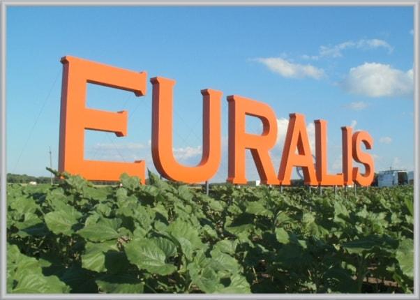 Не световые объемные буквы аграрной компании