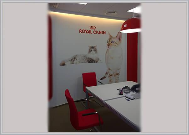 Оформление, брендирование стен офиса компании