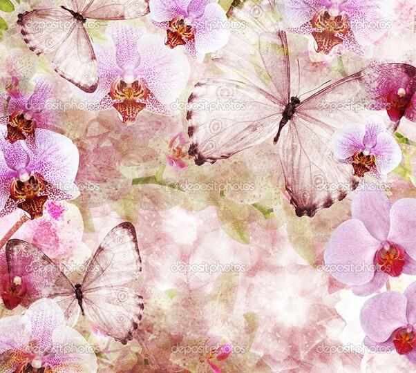 depositphotos_10188149-Butterflies-and-orchids-flowers-pink
