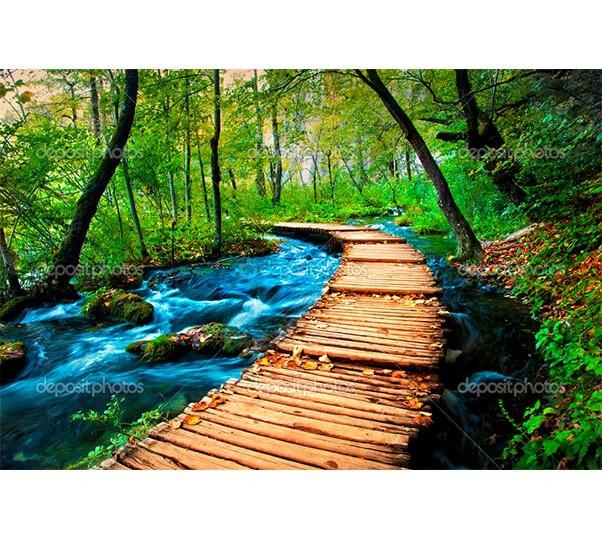 depositphotos_15419103-Deep-forest-stream-crystal-clear