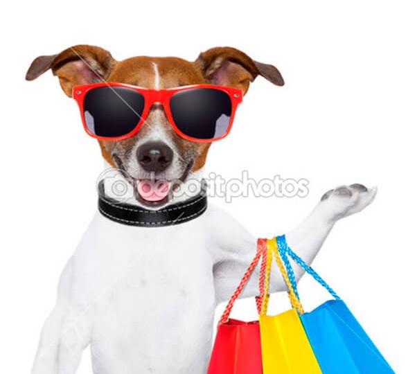 depositphotos_21082823-Fitness-dog