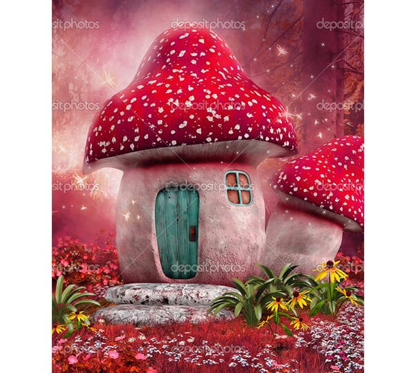depositphotos_40347645-Pink-mushroom-house