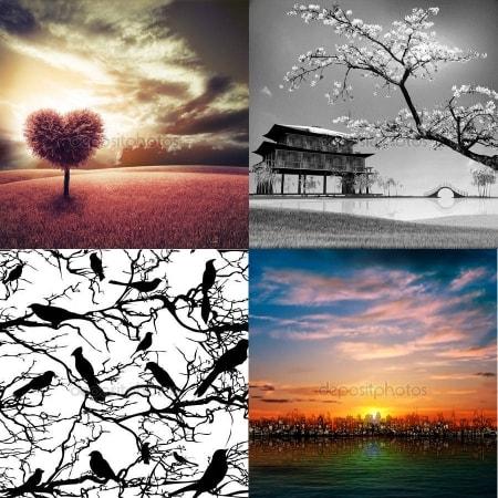 Изображения для светильников с фотобанка - тематика Природа