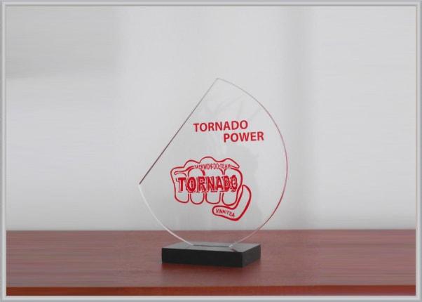Нагородний кубок, статуетка із акрила для спортивного клуба таеквон-до Торнадо, Вінниця