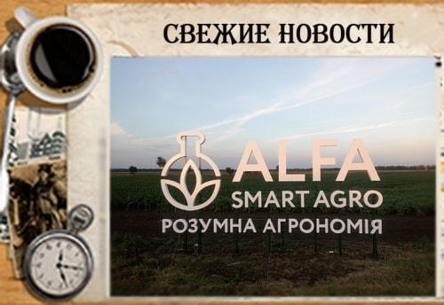 Виготовлення об'ємних букв із композита на металокаркасі для аграрної фірми