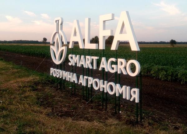 Объемные буквы и логотип фирмы на металлокаркасе