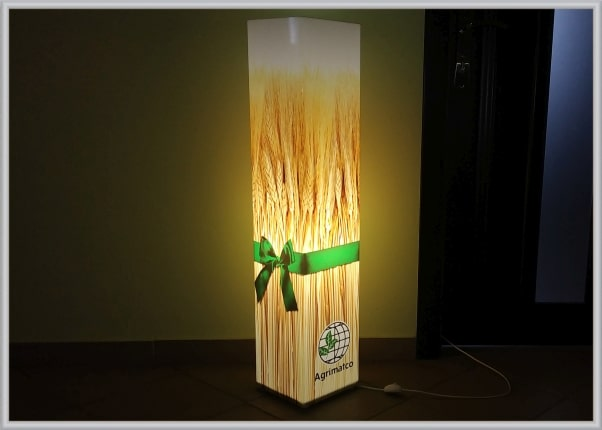 Сувенирная продукция для VIP-клиентов: акриловый светильник