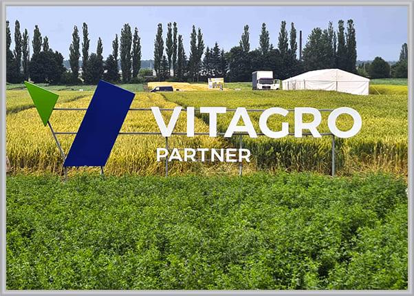 Наземные имиджевые буквы, логотип в поле для аграрной компании